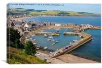 Looking down on Stonehaven Harbour, Canvas Print