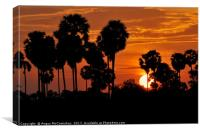 Cambodian sunset, Canvas Print