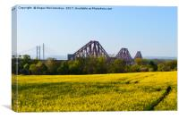 Rapeseed field with three bridges, Canvas Print