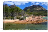 Swimmer in Honeymoon Bay, Freycinet National Park, Canvas Print