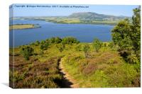 Footpath leading to viewpoint on Benarty Hill, Canvas Print