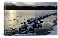 Loch Morlich winter snow, Canvas Print