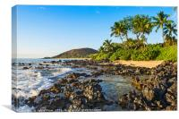 An unamed cove with a small strip of perfectly san, Canvas Print