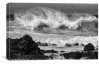 The large and spectacular waves at Hookipa Beach , Canvas Print