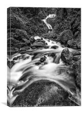 Beautiful Bunch Creek Falls in the Olympic Nationa, Canvas Print