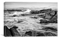 Rocky Asilomar Beach in Monterey Bay at sunset., Canvas Print
