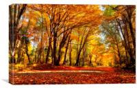 Autumn in Quebec, Canvas Print