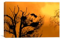 Grey Heron Landing on Nest at Sunset, Canvas Print