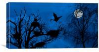Heron Landing on Nest at Night, Canvas Print