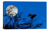 Grey Heron in Tree at Full Moon, Canvas Print