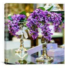 Branch of lilac., Canvas Print