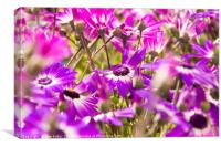 Summer Floral Patters, Canvas Print