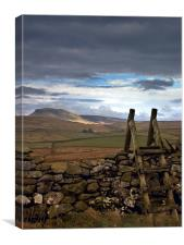 Pen-y-Ghent, Yorkshire Dales, Canvas Print