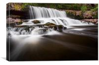 Aysgarth Falls, Yorkshire Dales, Canvas Print