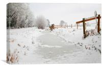 Winter Snow on The Somerset Levels, Canvas Print