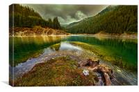 Galbenu lake in Romania, Canvas Print