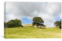 Crook Fell near Sedbergh Cumbria, Canvas Print