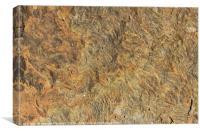 Weathered yorkstone paving, Canvas Print