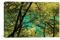 Trees and lake in Plitvice National Park, Canvas Print