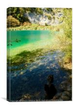 Beautiful lake at Plitvice National Park, Croatia, Canvas Print