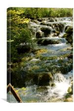 Lovely water cascade at Plitvice National Park, Canvas Print