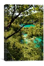 Beautiful view at a couple of lakes in Plitvice Na, Canvas Print