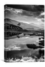 Dark Reflection, Scotland, Canvas Print