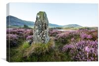 Standing Stone and Heather, Canvas Print
