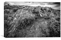 Rocks, Heather and Lone Tree in Mono , Canvas Print