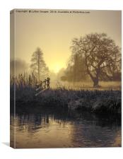 Golden Morning on the river, Canvas Print