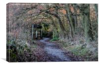 Simply a path, Canvas Print