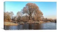 Winter wonderland 8, Canvas Print