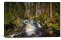 Waterfall at Harz Mountain, Canvas Print