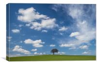 How Hill Tree, Canvas Print