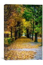 Autumn in Vienna, Canvas Print