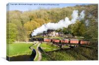 Black lion and steam train, Canvas Print