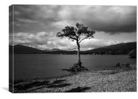 Millorchy Bay, Loch Lomond, Canvas Print