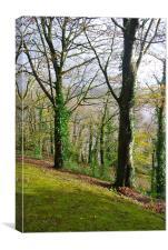 Milk Wood, Laugharne, Canvas Print
