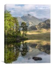 Early morning at Blea Tarn in the Lake District, Canvas Print