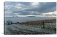 Misty December Dawn, Canvas Print