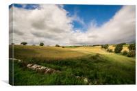 Scotland Corn Field, Canvas Print