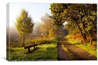 Autumn Pathway, Canvas Print