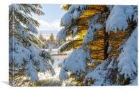 Winter Wonderland Snowscape , Canvas Print