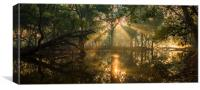 Rays from heaven, Canvas Print