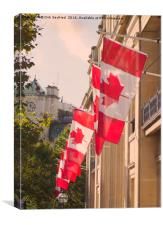 Canadian Flags, London, Canvas Print