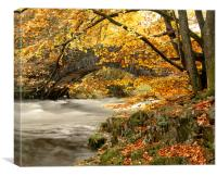 River Brathay, Clappersgate, Lake District, Cumbri, Canvas Print