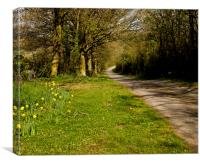 Herefordshire lane in spring, Canvas Print