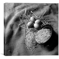 New laid eggs, straw and oats on hessian sacking, Canvas Print