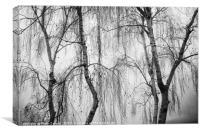 Shrouded in Fog, Canvas Print