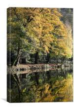 Autumn Reflected, Canvas Print